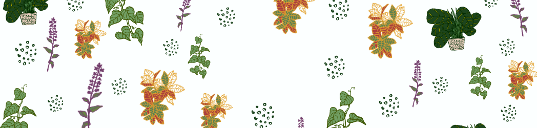 Coloured leaves in green, purple, orange on a white background